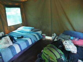 Actual beds!