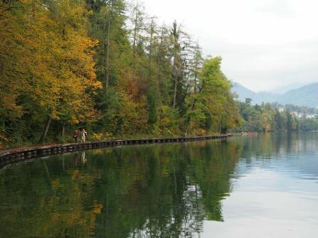 Pathway around the lake